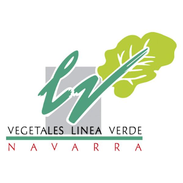 Logo la linea verde spagna