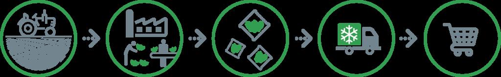 Schema filera integrata - La Linea Verde
